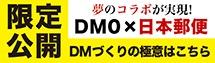 DM Guide